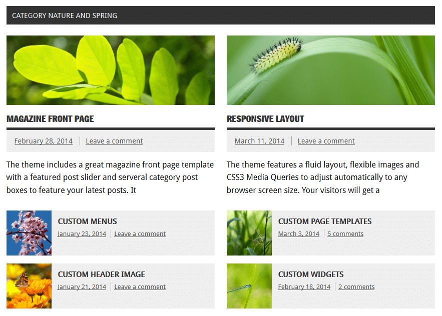 Dynamic News Documentation – ThemeZee