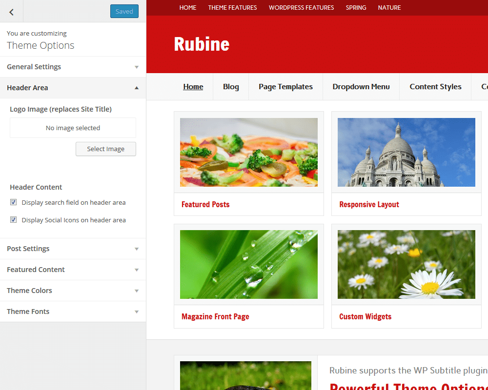 rubine-theme-options