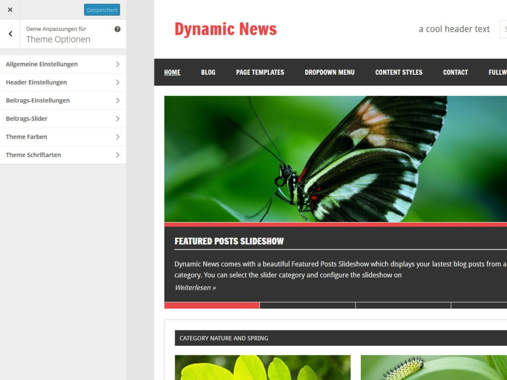 dynamic-news-theme-optionen
