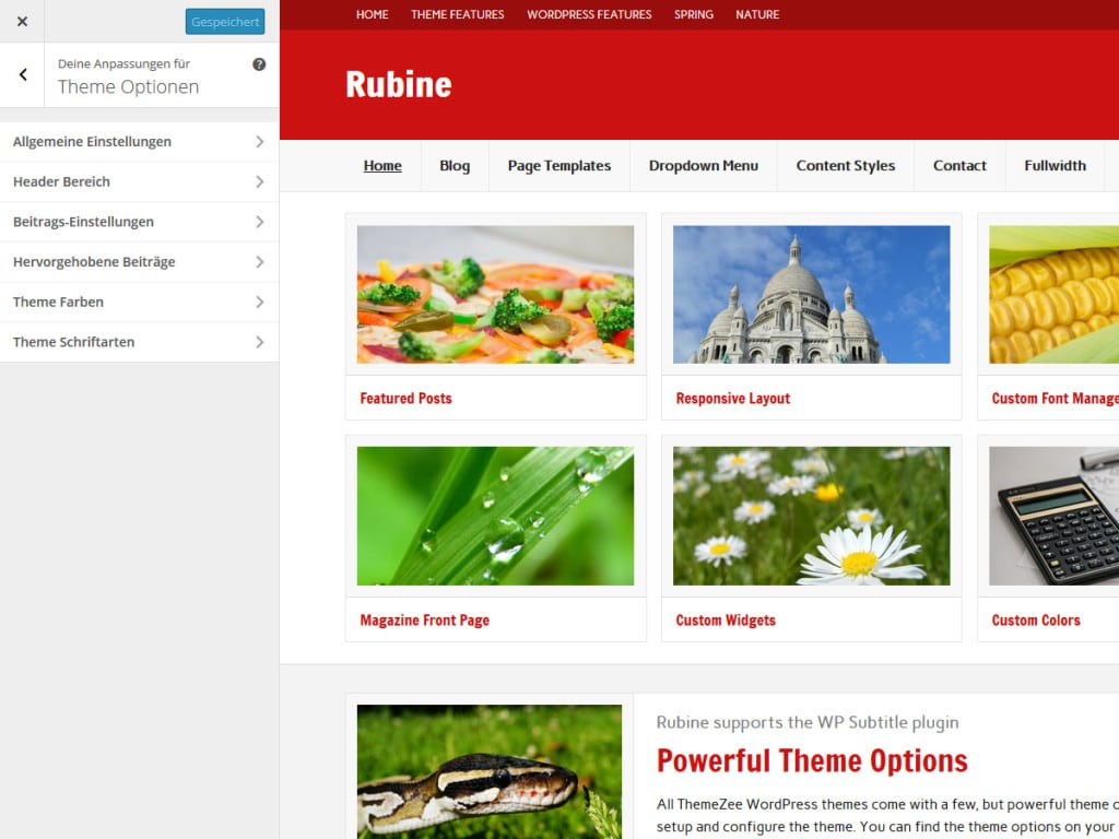 rubine-theme-optionen