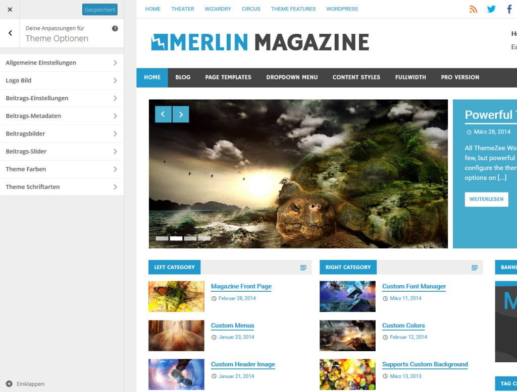 merlin-theme-optionen