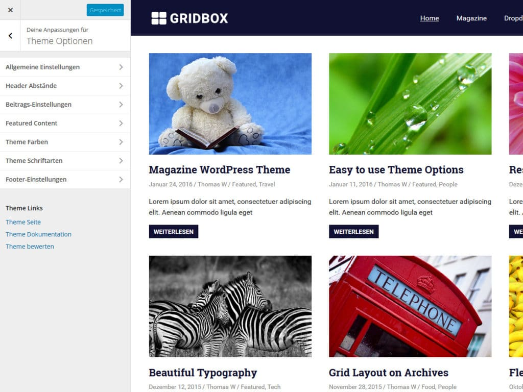 gridbox-theme-optionen