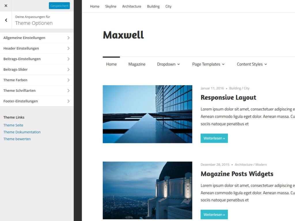 maxwell-theme-optionen