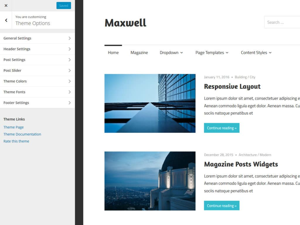maxwell-theme-options